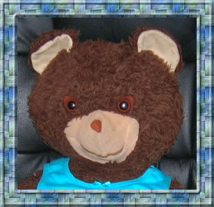 Framed picture of Bear - for your convenience